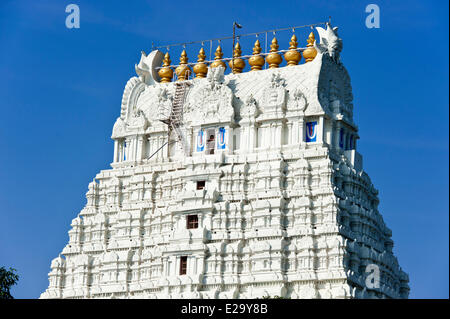 India, Tamil Nadu State, Kanchipuram, Varadaraja Perumal temple (or Devarajaswami temple) dedicated to Vishnu - Stock Photo