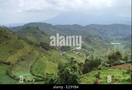 aerial view around the Virunga Mountains in Uganda (Africa) with clouded sky - Stock Photo