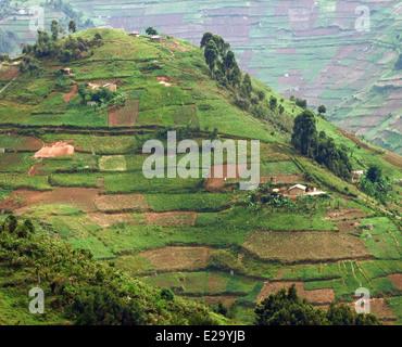 aerial detail around the Virunga Mountains in Uganda (Africa) - Stock Photo