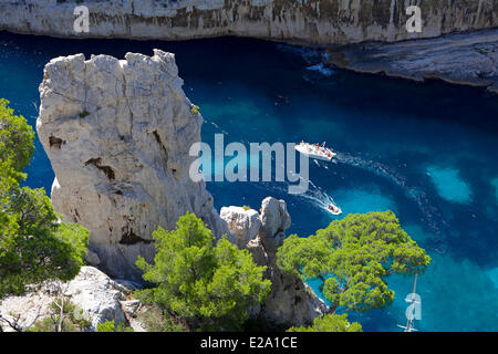 France, Bouches du Rhone, Marseille, european capital of culture 2013, the 9th district, Calanque d'En Vau - Stock Photo