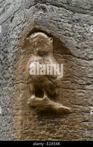 France, Cote d'Or, Dijon, owl sculpture luck street corner in Old Town - Stock Photo