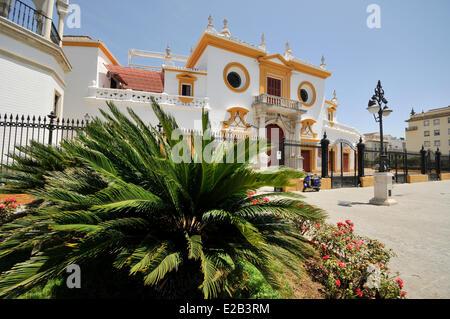 Spain, Andalucia, Seville, Plaza de toros, Maestranza bullring 18th century Baroque Sevillian - Stock Photo