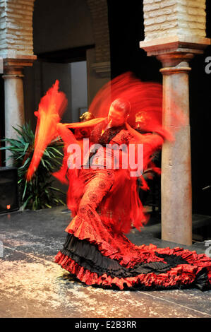 Spain, Andalucia, Seville, Museum of Flamenco dancing, woman dancing in a red and black dress - Stock Photo