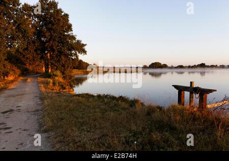 France, Indre, Berry, Parc Naturel Regional de la Brenne (Natural Regional Park of La Brenne), early hours - Stock Photo
