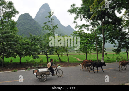 China, Guangxi province, Guilin region, Karst mountain landscape around Yangshuo - Stock Photo