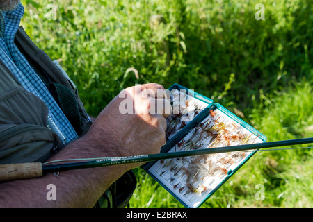 Trout fisherman selecting fly, River Wylye, Wiltshire, England - Stock Photo