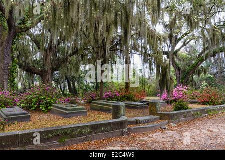 Bonaventure Cemetery in Savannah, Georgia - Stock Photo