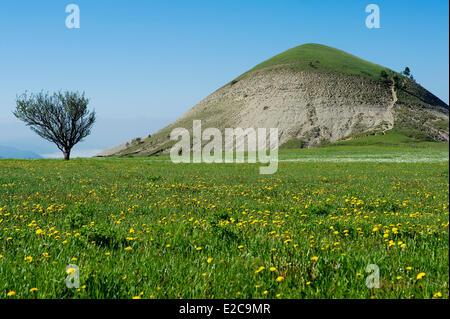 France, Lozere, Les Bondons, the puech or hills detrital - Stock Photo