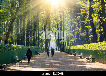 Russia, Saint Petersburg, listed as World Heritage by UNESCO, the summer garden - Stock Photo