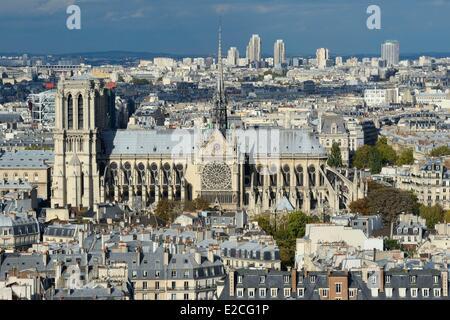 France, Paris, Ile de la Cite, Notre Dame Cathedral, the chevet and the spire dominates the statues of green copper - Stock Photo