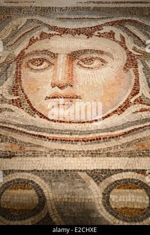 Israel, Jerusalem, Guivat Ram District, Israel Museum, department of archeology, detail of a mosaic of a Roman villa - Stock Photo