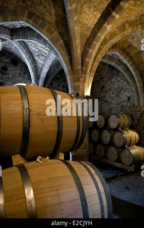 Switzerland, Canton of Vaud, Veytaux, cellars of Château de Chillon on Lake Geneva, the most visited monument in - Stock Photo