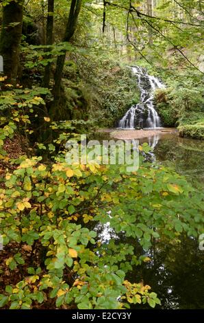 France Vosges Girmont Val d'Ajol Faymont the waterfall in the forest - Stock Photo