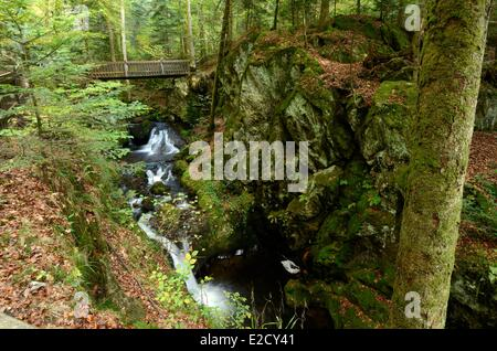 France Vosges Girmont Val d'Ajol Gehard the waterfall in the forest - Stock Photo