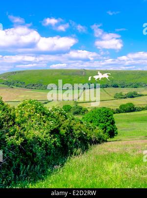 White Horse carved into chalk hillside in Osmington Dorset. - Stock Photo
