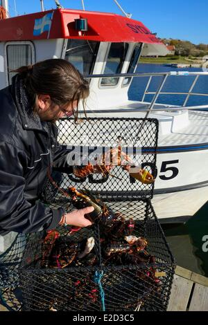 Sweden Vastra Gotaland Koster Islands Sydkoster Ekenas port returning from lobster fishing - Stock Photo