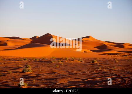 Morocco, Tafilalet region, Merzouga, erg Chebbi desert, sand dunes - Stock Photo