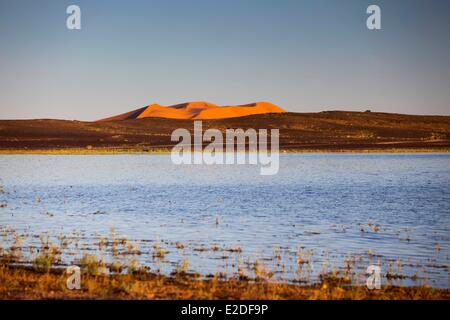 Morocco, Tafilalet region, Merzouga, erg Chebbi desert, sand dunes and lake - Stock Photo