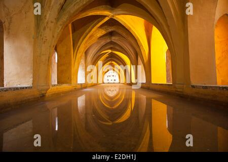 Spain, Andalusia, Sevilla, Real Alcazar (Alcazar of Seville) listed as World Heritage by UNESCO, baths of Dona Maria - Stock Photo