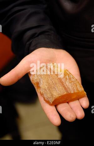 Lithuania County Vilnius Vilnius Algina and Rolandas Zalimai gallery jewelery Arza piece of amber - Stock Photo