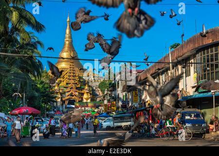 Myanmar (Burma) Yangon division Yangon district of Kandawgyi Avenue Gabaraye Pagoda the Shwedagon Pagoda the East - Stock Photo