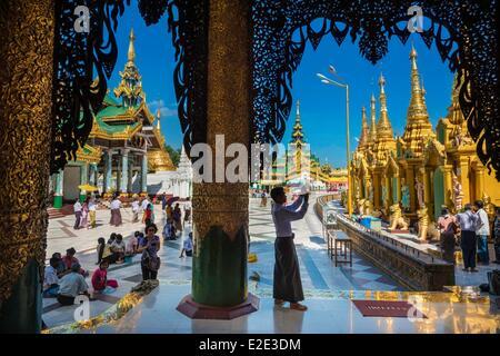 Myanmar (Burma) Yangon division Yangon district of Kandawgyi Shwedagon Pagoda buddhist visiting - Stock Photo