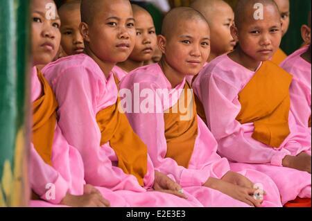 Myanmar (Burma) Yangon division Yangon district of Kandawgyi Shwedagon Pagoda nuns praying - Stock Photo
