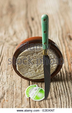 France, Isere, Saint Felicien cheese from Fromagerie de l'Etoile du Vercors, Styling Valerie Lhomme - Stock Photo
