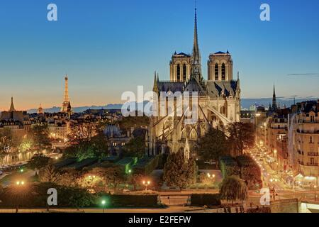 France Paris Notre Dame cathedral on City island with the Eiffel tower illuminated (⌐ SETE illuminations Pierre - Stock Photo