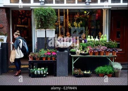 Netherlands Amsterdam flower shop in Wolvenstraat street - Stock Photo