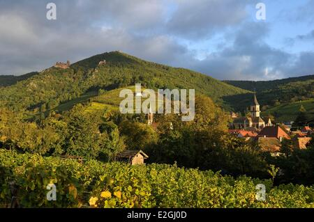 France Haut Rhin Alsace Wine Road Ribeauville and Saint-Ulrich castle - Stock Photo