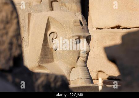 Egypt Upper Egypt Luxor temple listed as a World Heritage by UNESCO pylon of Ramses II head of a statue of Ramses - Stock Photo