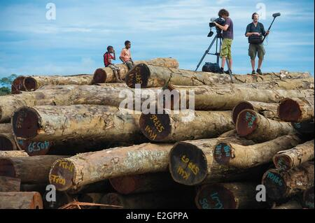 Papua New Guinea East Sepik province Sepik River Region village Marienbag logging filming session - Stock Photo