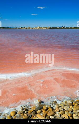 France Gard Aigues Mortes Compagnie des Salins du Midi which exploits salt marsh of Aigues Mortes was awarded prize - Stock Photo