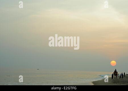 India Odisha state Puri sunset with camel on beach - Stock Photo