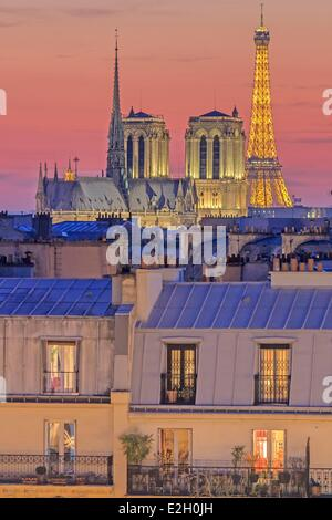 France Paris Notre Dame cathedral on Ile de la Cite and Eiffel Tower (⌐ SETE illuminations Pierre Bideau) illuminated - Stock Photo
