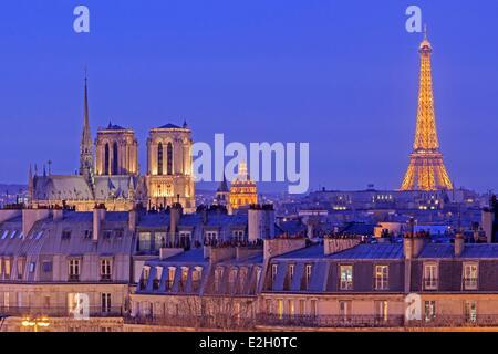 France Paris Notre Dame cathedral on Ile de la Cite Eiffel Tower (⌐ SETE illuminations Pierre Bideau) Invalides - Stock Photo