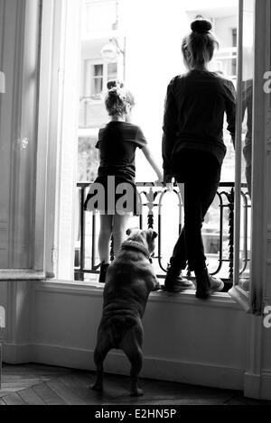 Sisters gazing out window with pet dog, rear view - Stock Photo