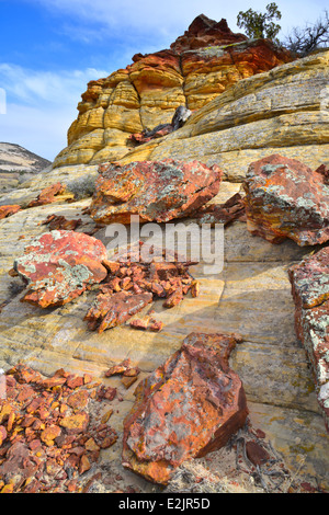 Ancient lichen covered rocks along Boulder-Notom Road in Grand Staircase Escalante National Monument near Boulder, - Stock Photo