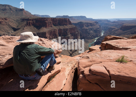 Volunteer ranger looking down at Colorado River gorge from Toroweap Overlook in Grand Canyon National Park, Arizona. - Stock Photo