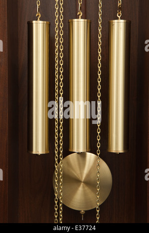 Reproduction 'Tempus Fugit' (Time Flies) Grandfather / Longcase clock by Hermle - Stock Photo