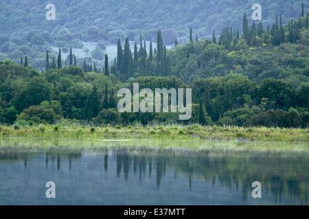 Cypress trees reflect into one of the two lakes at Tzanata, Kefalonia - Stock Photo