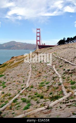 soil erosion control straw waddles on hill overlooking golden gate bridge - Stock Photo