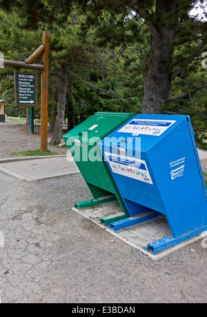 Animal Bear Proof Garbage Container Stock Photo Royalty