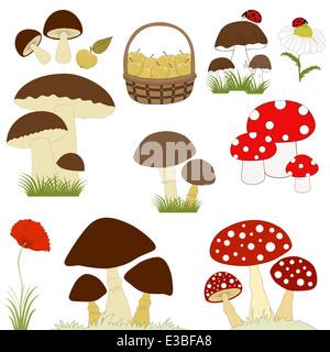 Set of cartoon mushrooms on white background - Stock Photo