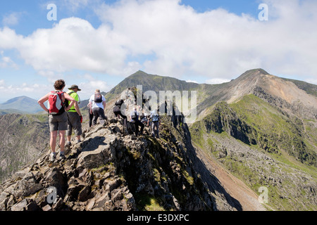 Scramblers climbing on Crib Goch a mountain ridge top scramble in Snowdon Horseshoe with Mount Snowdon and Crib - Stock Photo