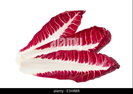 red chicory leaves isolated on white - Stock Photo