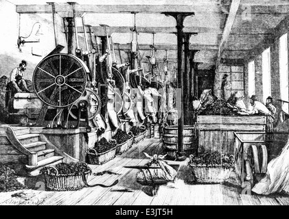 tobacco manufacturing of paris,engraving by a.jahandier - Stock Photo