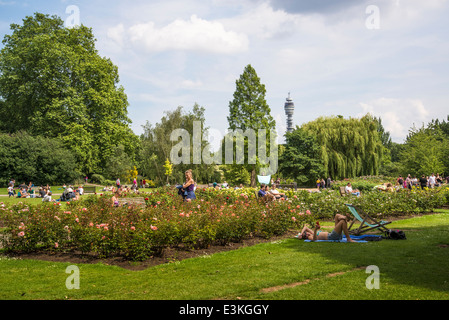People in the Rose Garden, Regents Park, London, England, UK - Stock Photo