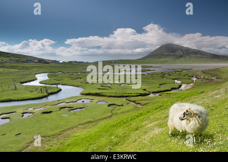 Ceapabhal hill and tital inlets or saltings at An Taobh Tuath or Northton on the Isle of Harris, Scotland. - Stock Photo
